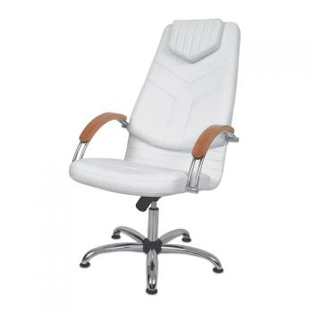 Косметическое кресло Dino I с подлокотниками деревянными Panda | Venko